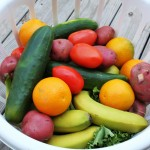 Your Neighborhood Produce