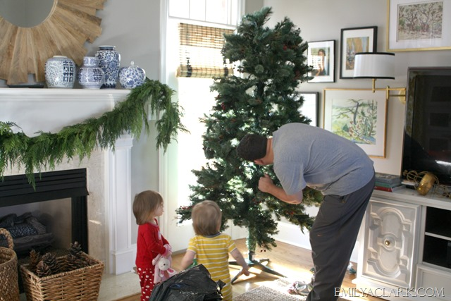 putting up tree