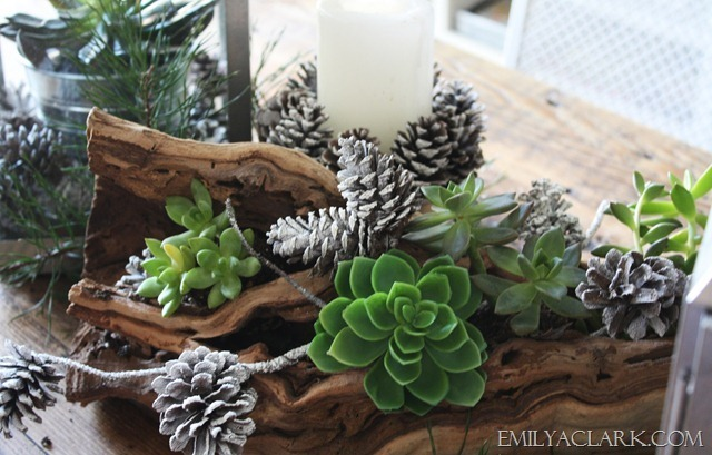 succulent, pinecone and driftwood centerpiece