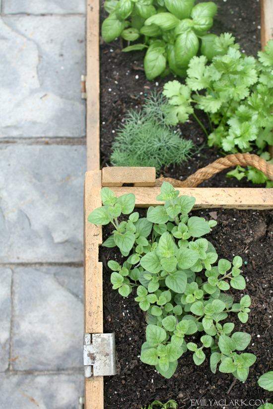 two-tier herb garden