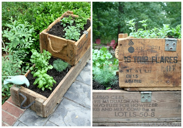 planting an herb garden in old ammo boxes