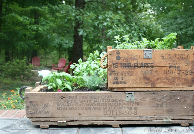 herb garden in wood ammo boxes