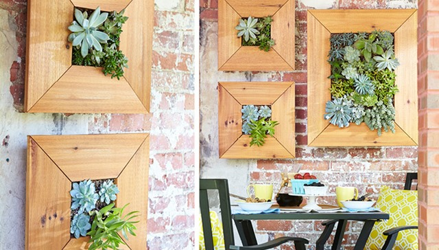 wall-mounted-succulent-planter