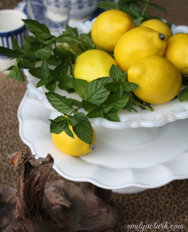 lemon mint centerpiece