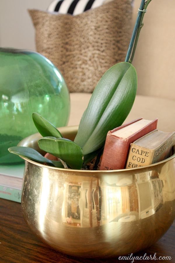 books in planter