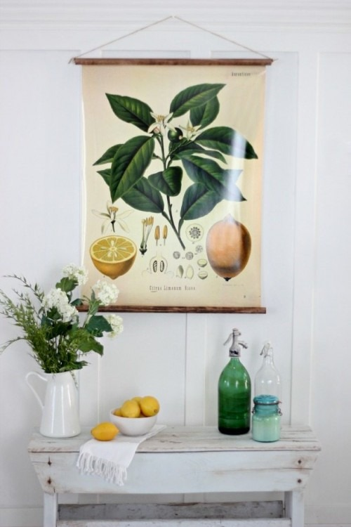 diy-botanical-prints
