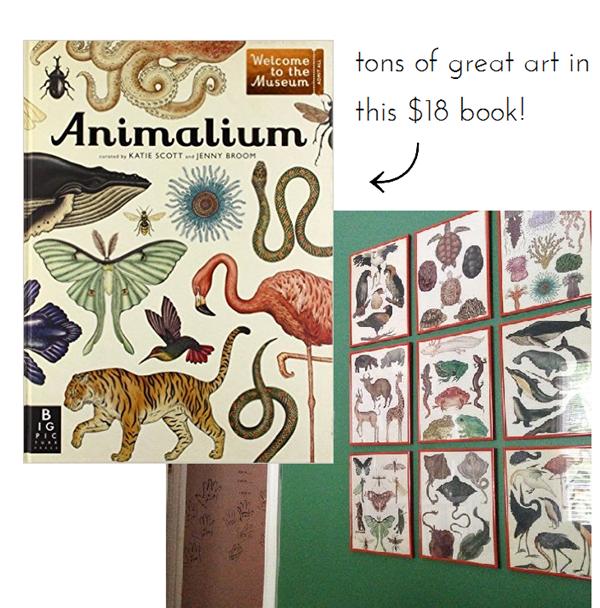 animalium_book