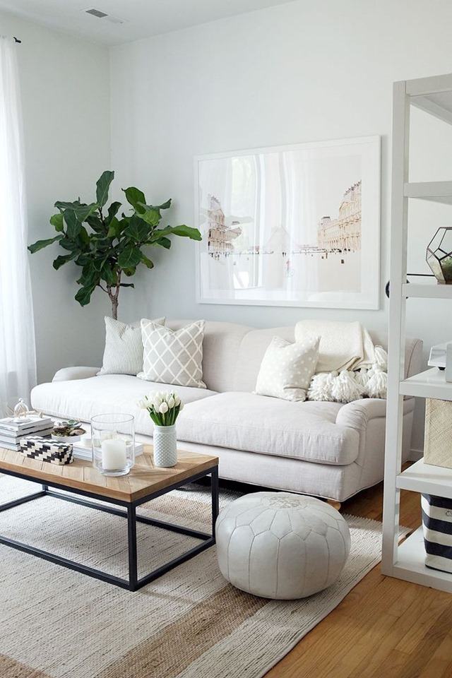 white_living_room_walls