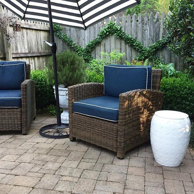 patio_ivy