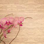 "Peel & Stick ""Grasscloth"" Wallpaper (My Wayfair Video)"