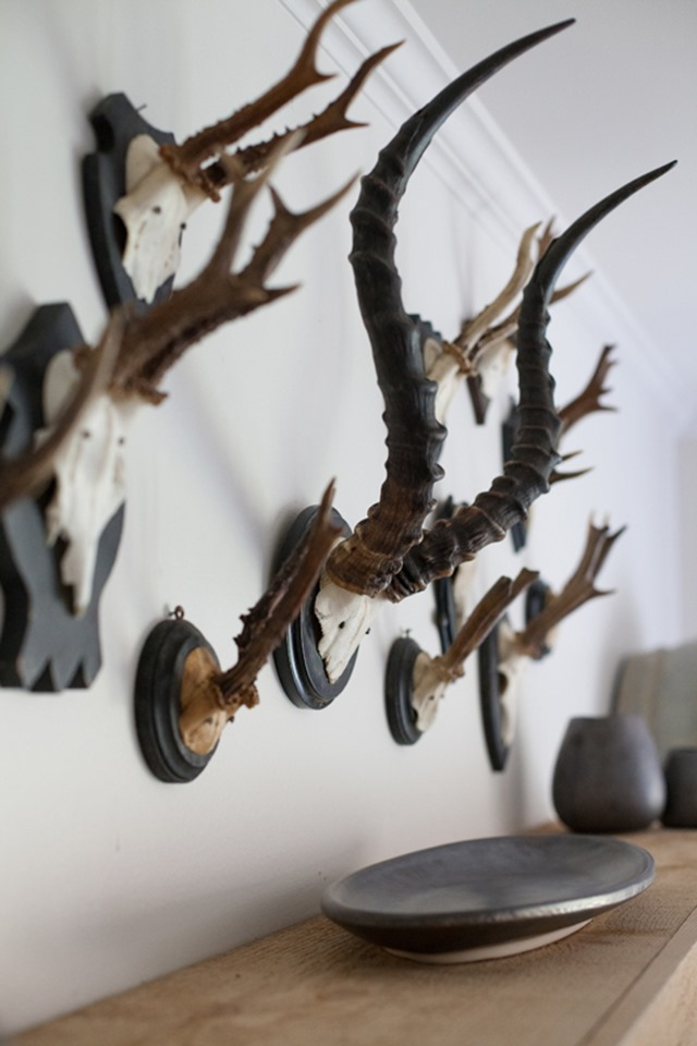 antler-display