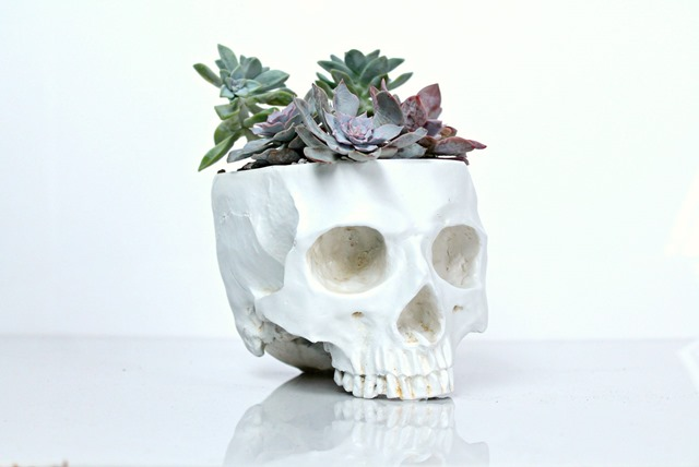 skull planter Halloween decor