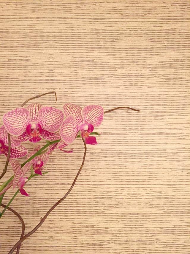 grasscloth-peel-stick-wallpaper