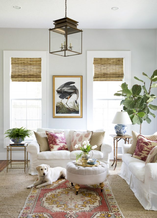 fiddle leaf fig tree via Country Living