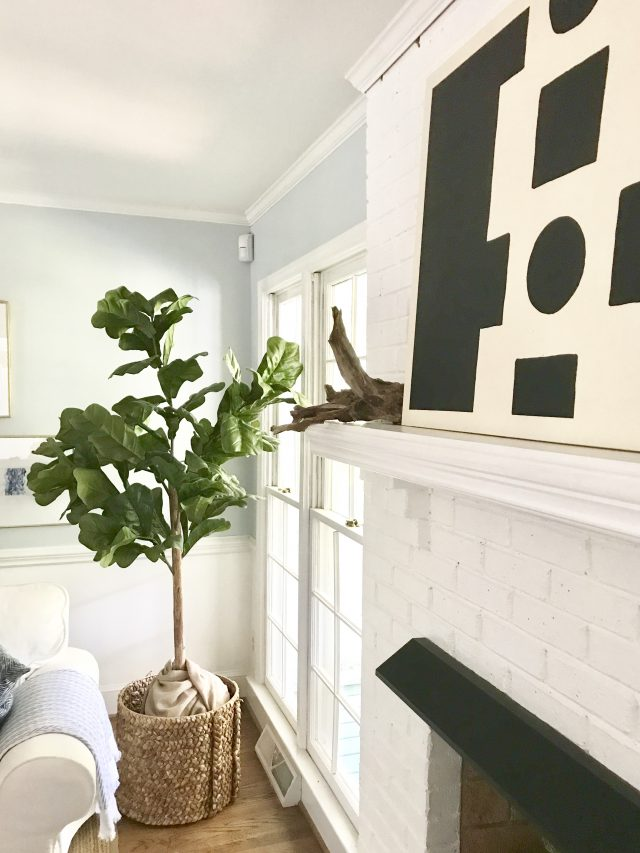 living room fiddle leaf fig tree