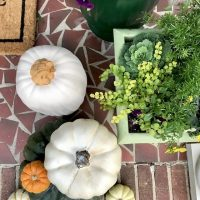 Fall-front-porch-planters-pumpkins