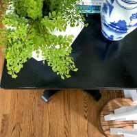 maidenhair-fern-spring-decorating-find
