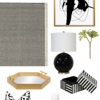 Simplified Styling Black White Modern