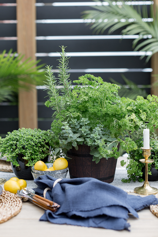 outdoor table ideas craftberry bush