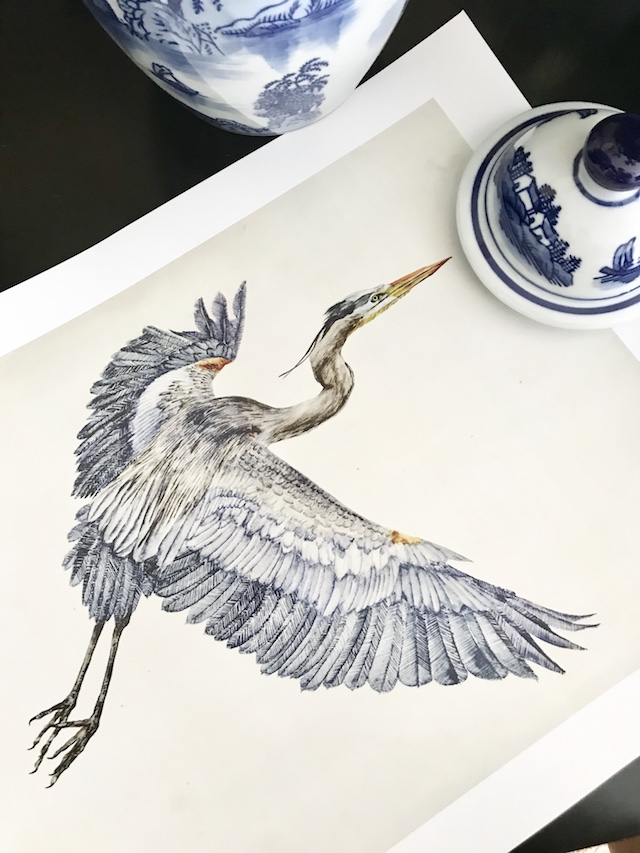 walmart art com vintage bird print