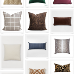 Fast Favorites: Fall Pillows Under $30