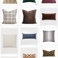 Fall Pillows Under $30