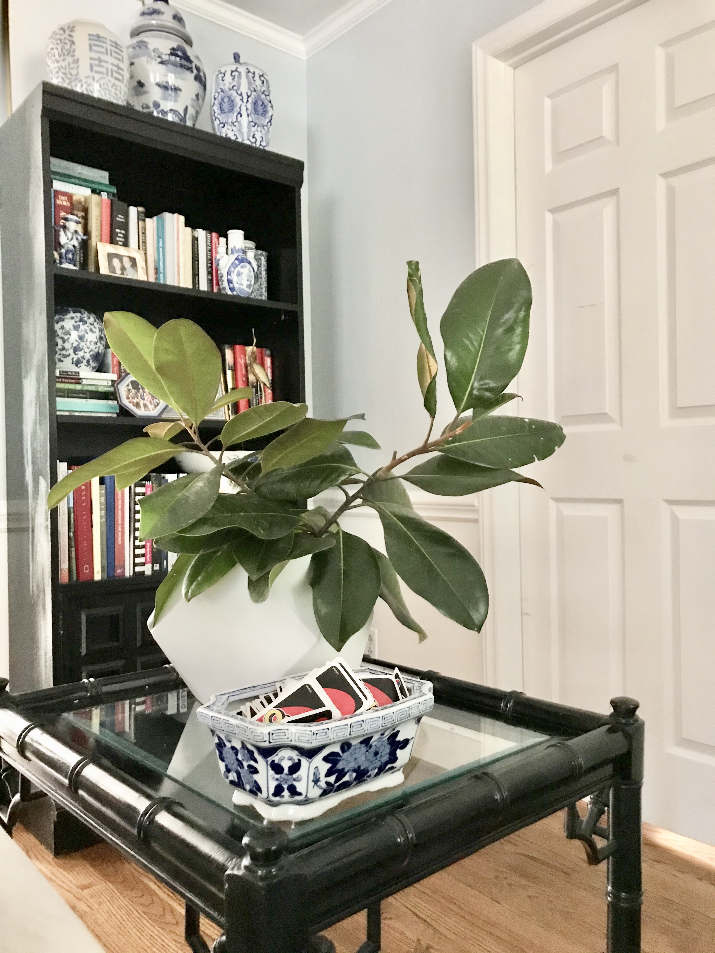 best-tips-hosting-magnolia-branches