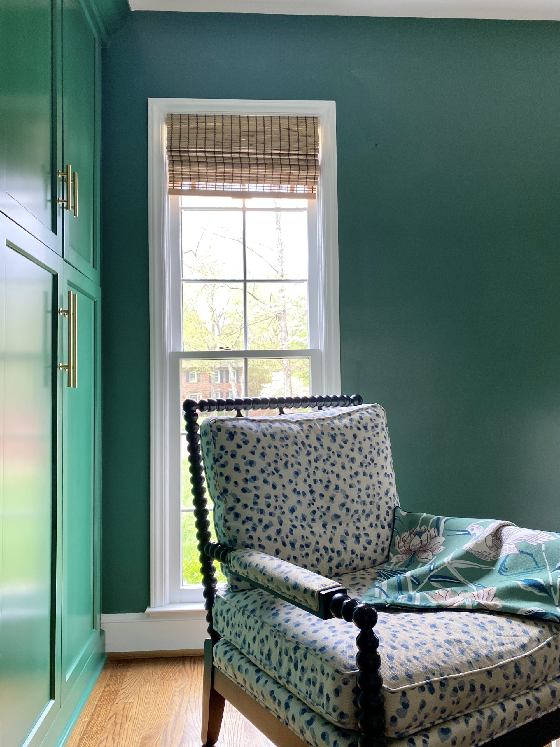 green-paint-walls-cabinets